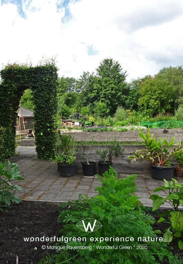 natuurwijs-Jan-Toorop-schooltuin-garden-side