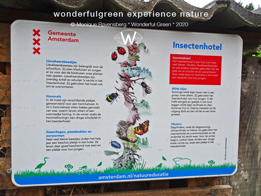natuurwijs-Jan-Toorop-schooltuin-insect-hotel-plate