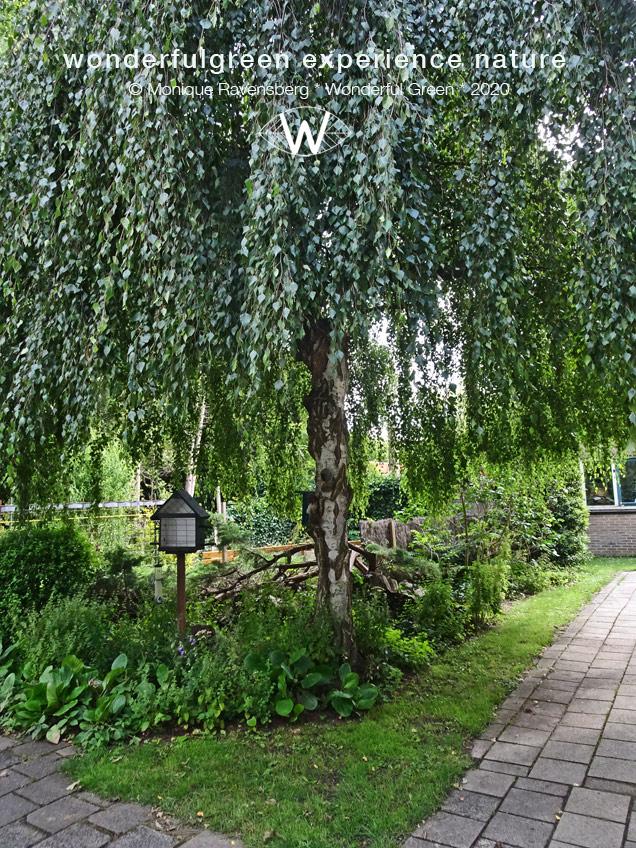 natuurwijs-Jan-Toorop-schooltuin-square