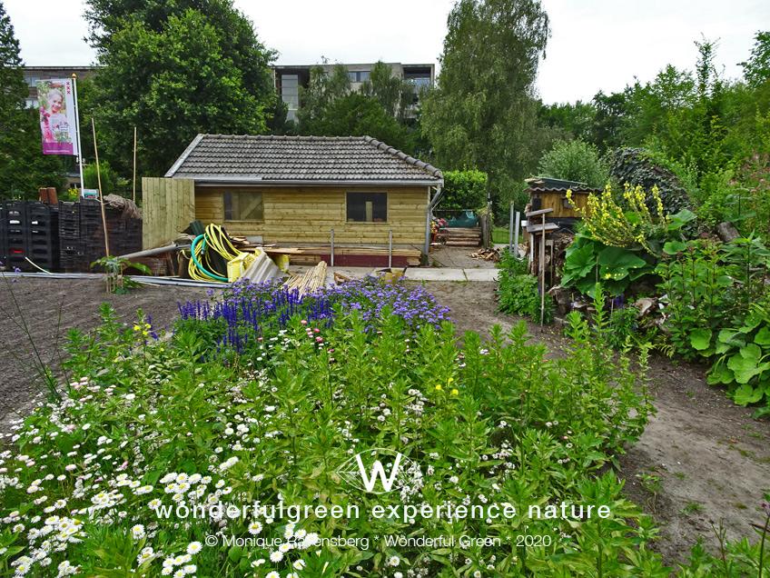 natuurwijs-Jan-Toorop-schooltuin-tuinschuur