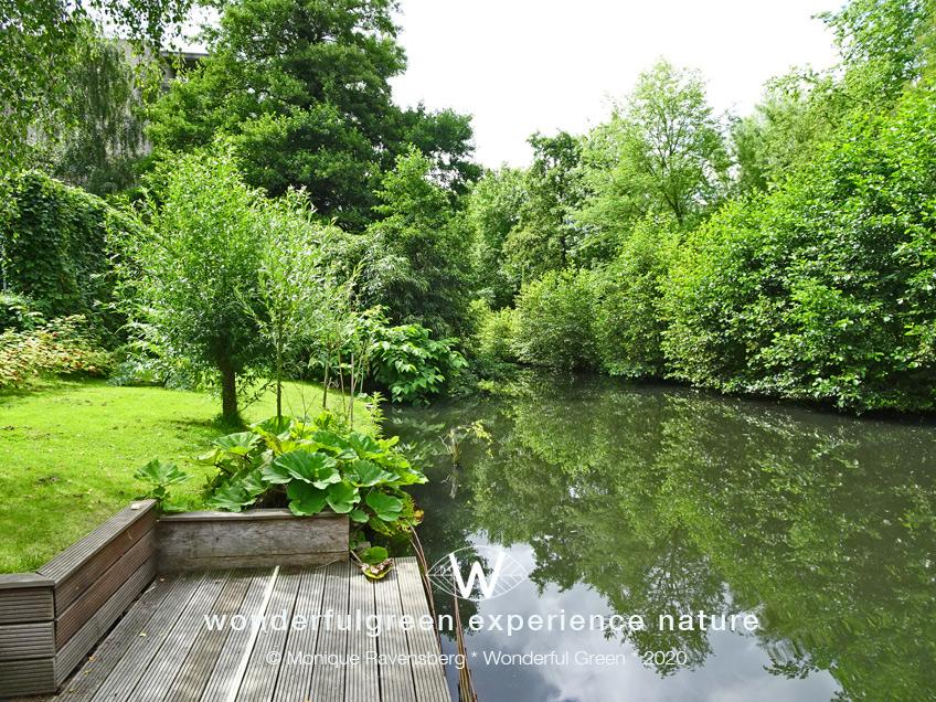 natuurwijs-Jan-Toorop-schooltuin-water-side
